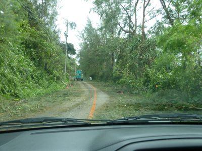 Verwüstete Straßen nach Taifun auf Okinawa