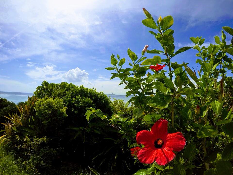 Blick vom Emerald Beach zu Ie-Jima